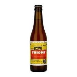 Dupont Triomfbier Vooruit 33 cl.