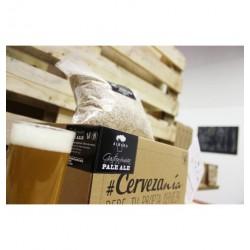 Kit elaboración 4L cerveza- CERVEZANÍA - PALE ALE