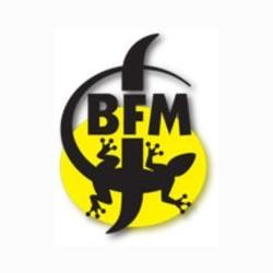 BFM (Brasserie des Franches-Montagnes)